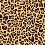 Leopardas